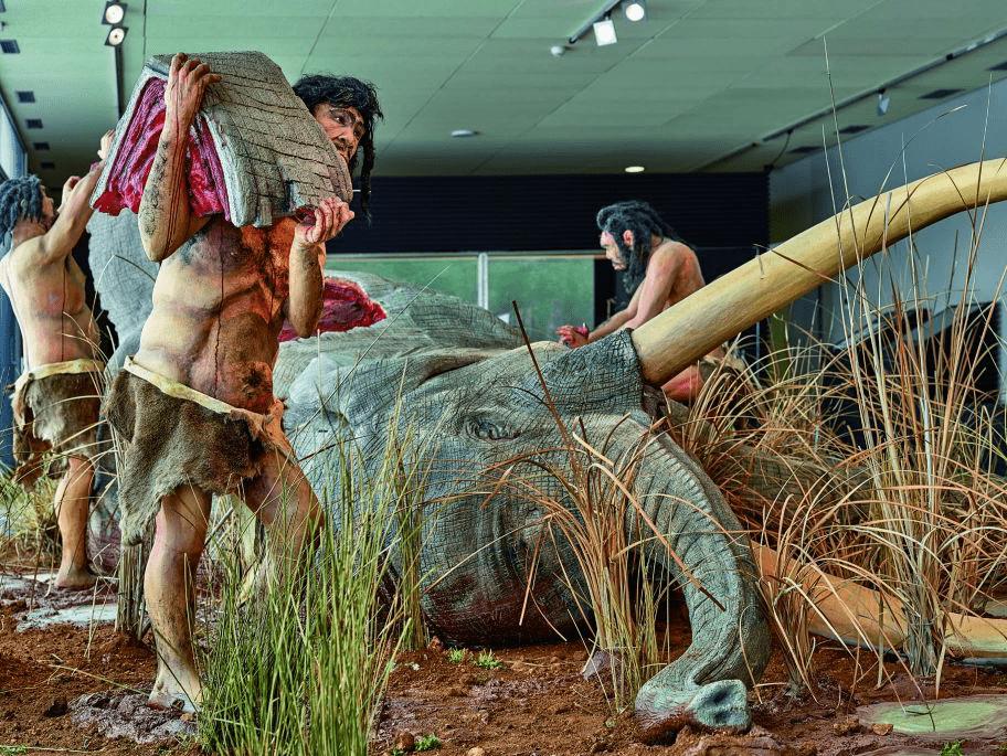 Ceuta dinosaurios de Cuenca