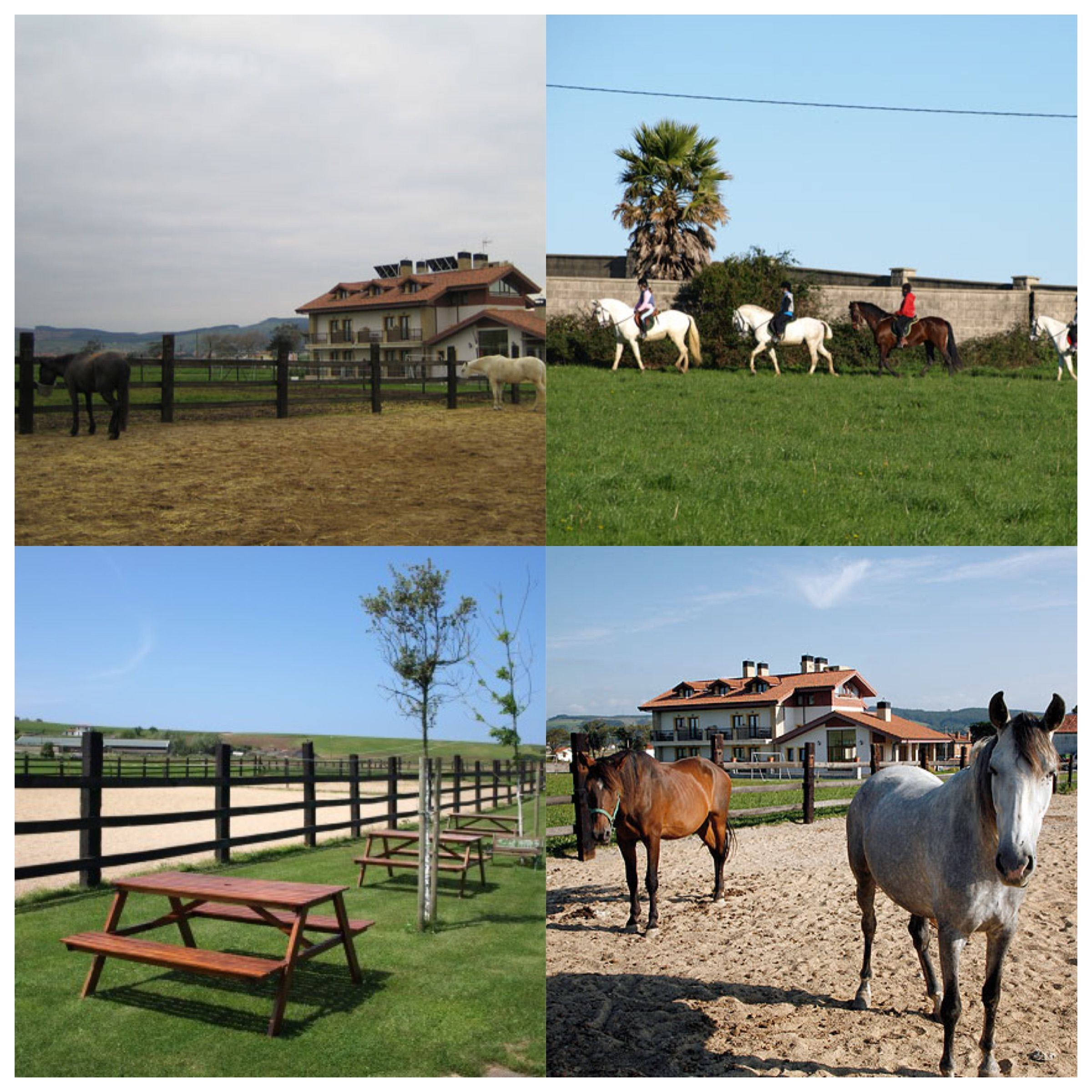 Picadero y clases de montar a caballo en Rancho Santa Geronima