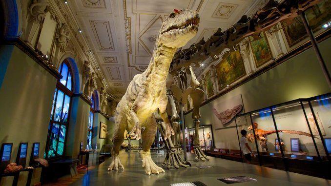 Museo Natural de Viena