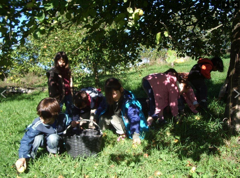 Agroturismo con niños en Asturias